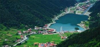Varis Tedavisi Trabzon